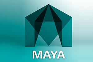 Maya 101
